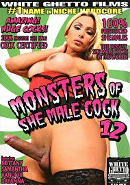 Monsters Of She Male Cock 12 (110252.1)