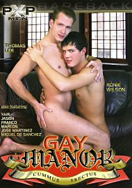 Gay Manor (113209.2)