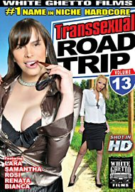 Transsexual Road Trip 13 (119113.1)