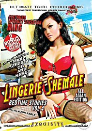 Lingerie Shemale Bedtime Stories 4 (125848.100)