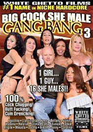 Big Cock Shemale Gang Bang 3 (128090.2)