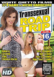Transsexual Road Trip 16 (131082.4)