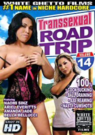 Transsexual Road Trip 14 (133208.8)