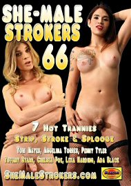 She-Male Strokers 66 (134397.3)