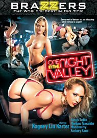 One Night In The Valley (139693.5)