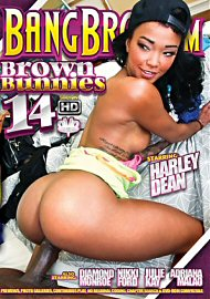 Brown Bunnies 14 (140983.4)