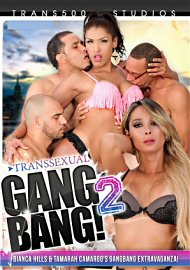 Transsexual Gang Bang 2 (142079.5)