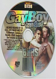 Gay Boy Spectacular - 6 Hours (143842.97)