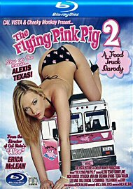 The Flying Pink Pig 2 (149405.7)