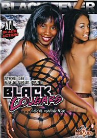 Black Cougars (151386.50)