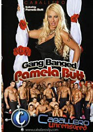Gang Banged Pamela Butt (151398.200)