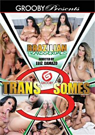 Brazilian Transsexuals: Trans 3 Somes (2017) (151480.5)