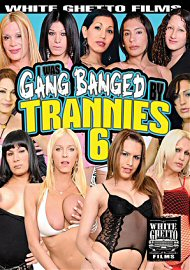 I Was Gang Banged By Trannies 6 (2017) (153475.2)