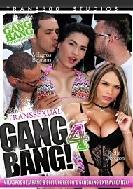 Transsexual Gang Bang 4 (2016) (153965.3)
