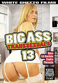 Big Ass Transsexuals 13 (2017) (154205.3)