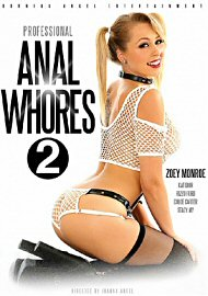 Professional Anal Whores 2 (2017) (157982.65)