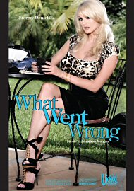 What Went Wrong (stormy Daniels) (162311.19)
