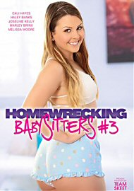 Homewrecking Babysitters 3 (168463.3)