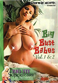 Big Bust Babes 1 And 2 (44882.17)