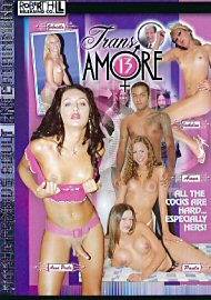 Trans Amore 13 (65201.2)