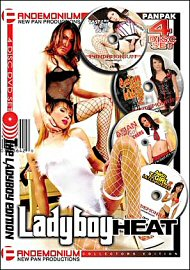 Ladyboy Heat (4 DVD Set) (90596.3)