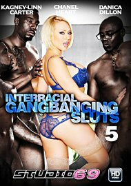 Interracial Gangbanging Sluts 5 (2017) (155600.7)